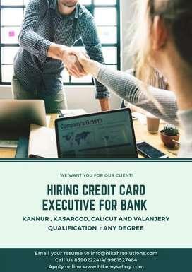Hiring Credit card Executive for Bank