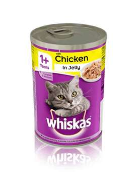 Cat Jelly Food Available