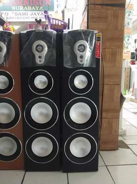 Speaker Polytron