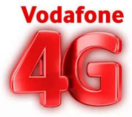 HR Payal(Vodafone 4G)Needs delivery boy no target/no charges