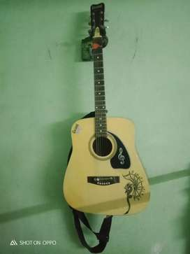 Givson guitar only 5 months old