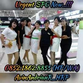 Urgent SPG Now !!!