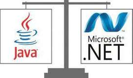 Wanted Java ,Net experience jobs in bangalore hyderabad