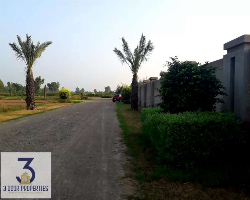 4-Kanal Farm House Land is available for Sale at Bedian Road 0