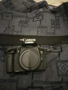 Canon 650d, 3lens Canon 18-55 stm 75-300, Yongnuo 50mm, flash gun