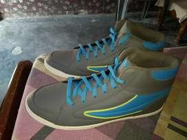 Fila shoe original