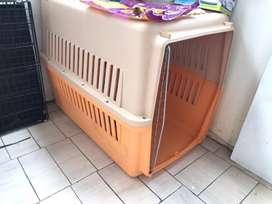 Kennel Box / Pet Cargo / Kandang Anjing