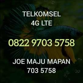 Nomor cantik Telkomsel angka Hoki berkarakter 703 5758 simPATI Loop 4G