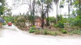 Dijual Tanah Bagus di Sidokarto Godean Sleman Yogyakarta