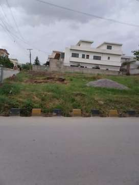 Commercial plot for sale (Best opportunity for investment)