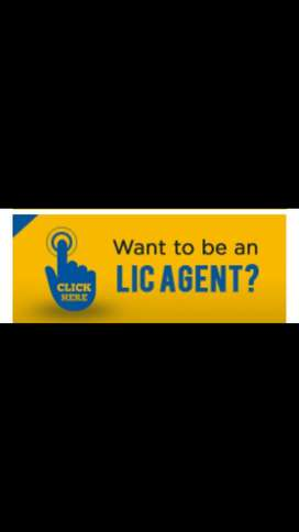 Agency consultant in LIC