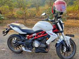 "Limited Edition Benelli 300. ABS.   VIP number  ""11"".   2017 model."