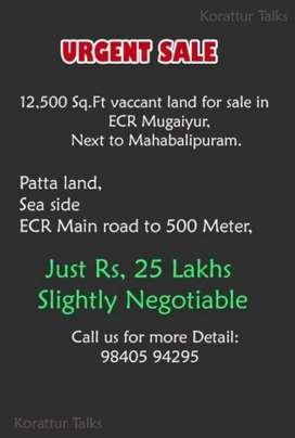 Urgent Sale