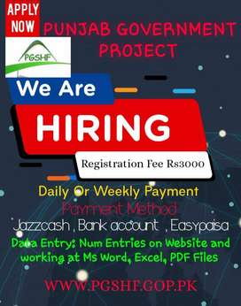 Simple Typing Data Entry Home Based Working For Fresh Females,