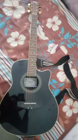 Trinity Electronic acoustic Guitar