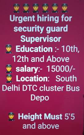 Metro and Airport Multiple Job Available on Urgent Basis