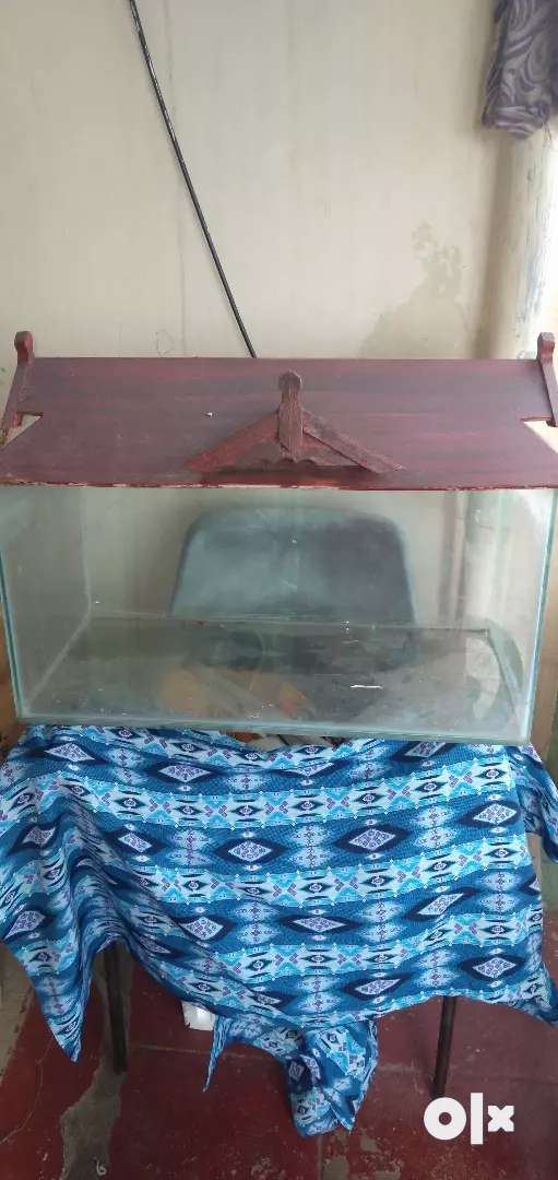 Big fish tank along with cap made of plywood.. 0