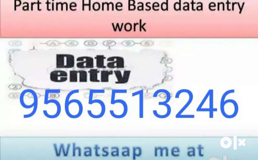 Weekly income from home by doing data entry work 0