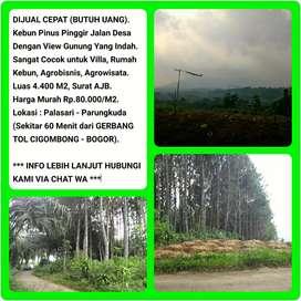 Jual Tanah Murah View Gunung Indah Kebun Pinus Pinggir Jalan 4.403m2.