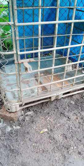 Dog cage very strong