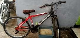 Sepeda Phoenix merah