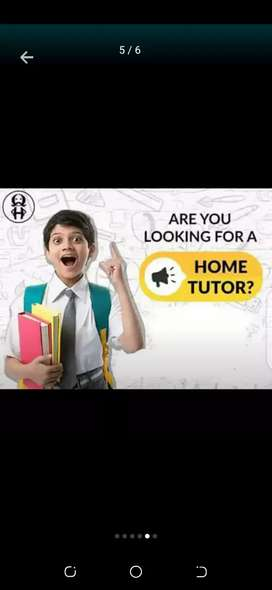 Highly Qualified And Professional Lady Home Tutors Required
