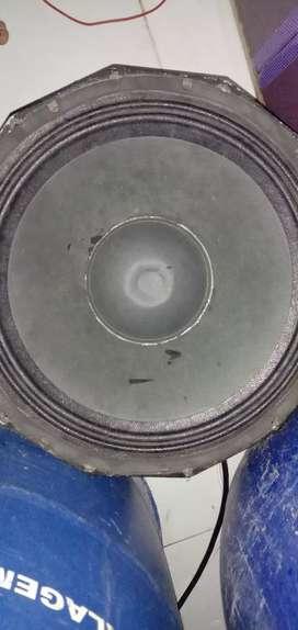 18 inch spikar bass
