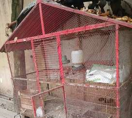 Iron cage for pets and birds