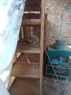 1 Birds House For Sale Each Cage Box 18, Good Condition,