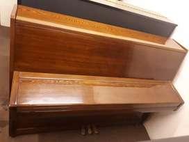 Piano Nieer Coklat Peter Piano Bintaro