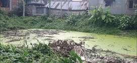 Kanakpur road radhamadhab college