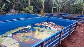 Terpal A12 Lmbran Polos/Rata Aja Tanpa Jaitan khusus Spesial kolam Ori