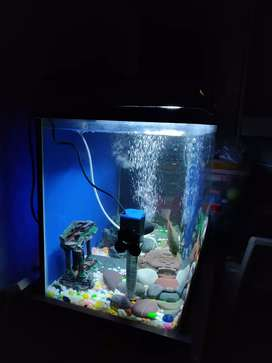 Fish tank with all aattachment