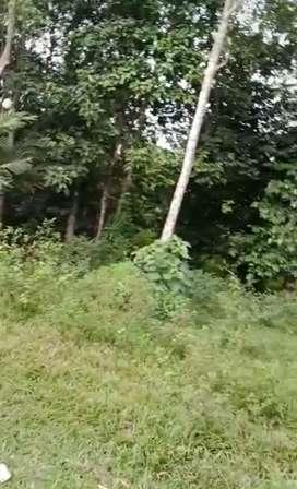 Disewakan murah tanah LT 10ha, ds argapura cigudeg