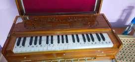 Harmonium 1 year old
