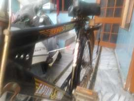 Captain India Bicycle -2000