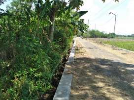 Sawah pertanian akses mobil truk