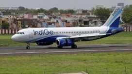 Urgent Hiring At Chennai Airport