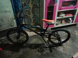 Evox bmx bike