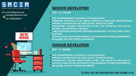 Expirenced PHP web developer, freshers can also apply
