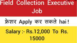 FIELD COLLECTION EXECUTIVE