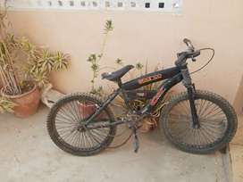 Cycle in cheap prices