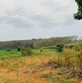 Land for sale at Kanjiramattom