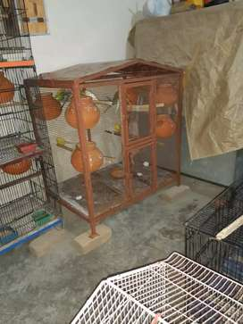 Colony cage for sale