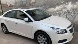 Top model Cruze for sale