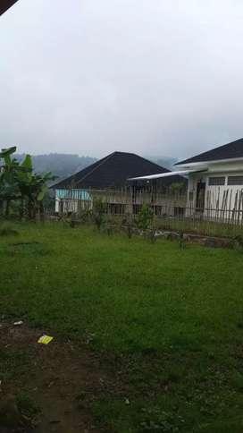 Tanah dengan villa dan kebun cabai best view