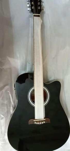 Oscar schmditi by washburn guitar with cover