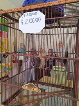 Sangkar Burung Ukir Jepara limited edition Banting harga buat sedekah