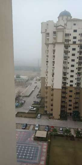 For rent 1bhk in Noida Extension
