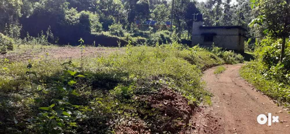 near koodal pathanamthitta 10 cents of land